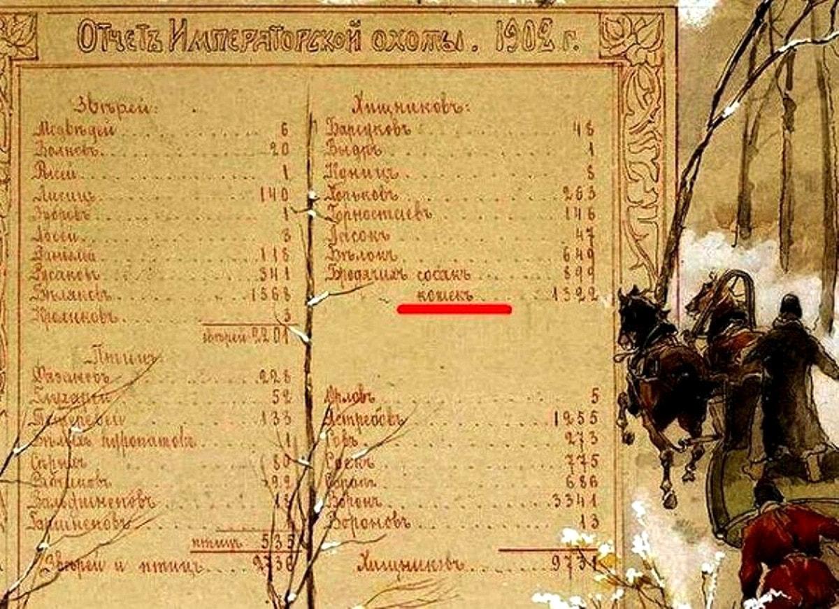 Отчет из царской охоты